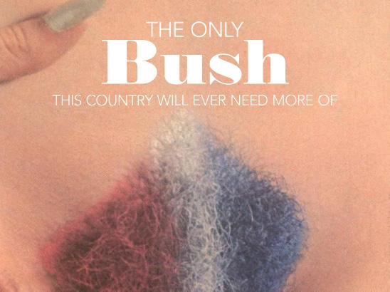 Bush Parody
