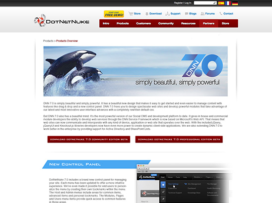 DotNetNuke Website