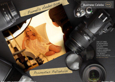 Pamela Anderson Layout
